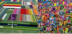 Dutch colors Vs Indian colors