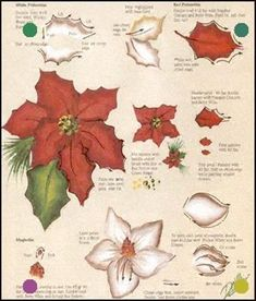 One Stroke Painting Patterns - Bing images Christmas Paintings, Christmas Art, Christmas Leaves, Poinsettia, Fabric Painting, Painting & Drawing, Donna Dewberry Painting, One Stroke Painting, Acrylic Painting Tutorials