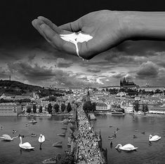 Thomas Barbéy | Thomas Barbey21 Thomas Barbey photomanipulations