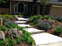 Here is a great front yard drought resistant landscape that has great curb appeal.