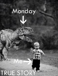 Do u wanna run from Monday too?