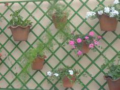 Monte seu jardim vertical
