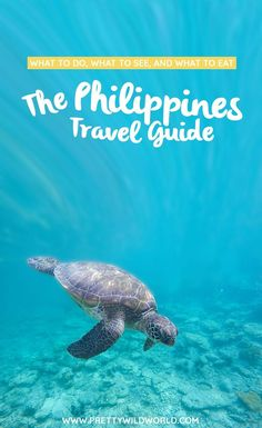 #PHILIPPINES #ASIA #TRAVEL   The Philippines Travel Guide   Things to do in the Philippines   The Philippines points of interest   What to do in the Philippines   Things to see in the Philippines   Places to visit in the Philippines via @prettywildworld