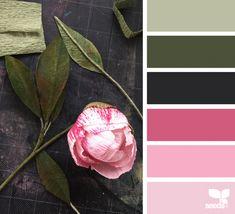 Likes, 5 Comments - Design Seeds® Design Seeds, Colour Schemes, Color Combos, Palettes Color, Colours That Go Together, Wedding Color Pallet, Color Balance, Creative Colour, Colour Board