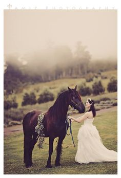 Image result for post wedding shoot with horse