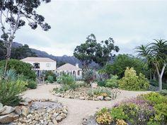 'n Waterwys lushof van vetplante en fynbos Water, Plants, Gripe Water, Plant, Planets