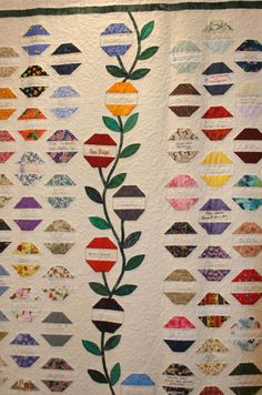 Love signature quilts.... like the vine in this one.