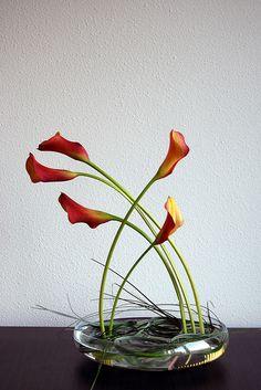 Ikebana 'Friends in orange' by Otomodachi, via Flickr