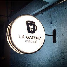 Llega a México, el primer cat café de Latinoamérica.  Ve y tomate un delicioso café en compañía de gatitos de albergues que incluso, podrás adoptar. Shop Signage, Retail Signage, Signage Design, Cafe Signage, Cafe Shop Design, Coffee Shop Interior Design, Cafe Logo, Neon Box, Storefront Signs