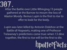 Professor Trelawney's prediction