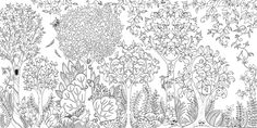 Enchanted Forest: An Inky Quest and Colouring Book - Google Search