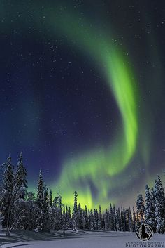 Northern lights over the Pyhae Luosto National Park in northern Finnland