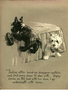 Westie and Scottie Dog Dopey and Gallant