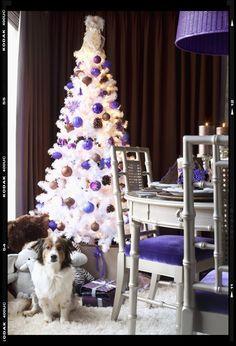 Le decorazioni natalizie sono ormai un'arte e l'Alberto è certamente il protagonista delle case in questo periodo. Oltre a far felici i bambini, gli adulti possono dare sfogo alle proprie inclinazioni artistiche.