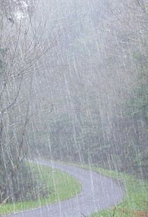 It is raining somewhere in the world today.