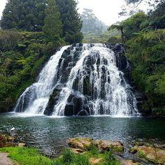 Owharoa Falls #nzmustdo #discovernz #waterfallsnz #purenewzealand