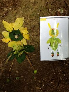 Using pages from 'blossom buddies' as inspiration at #forestschool