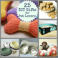 25 DIY Gift for Pet Lovers – Easy, Fun & Creative Designs | Sniff Design Studio™
