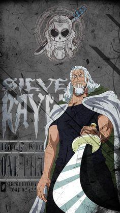 Silver Rayleigh – One Piece One Piece Manga, Ace One Piece, One Piece Photos, One Piece Figure, One Piece Drawing, Zoro One Piece, One Piece Comic, One Piece World, One Piece Fanart
