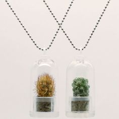 Just what your favorite green-thumbed pal has always wanted: a palm-sized ecosystem that's stylish to boot! These GemSprouts necklaces each feature a tiny, living plant displayed inside of a clear recycled plastic bell jar capsule. In this set, both the Texas and the green cactus dangle fetchingly from silver-toned ball chains. Your bestie will never again have to be far from nature, even in the dead of winter.