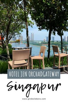 3 days in Singapore sights, highlights and tips - Trend Greenhouse Gardening 2019 Plaza Hotel, Infinity Pools, Ubud, Kuala Lumpur, Marina Bay Sands, Singapore Sights, Rooftop Pool, Gardens By The Bay, Greenhouse Gardening