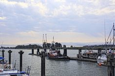 The Water is Wide by dfgariepy  British Columbia boats harbour ocean sea summer travel Denise Farncoise dfgariepy