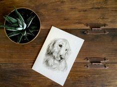 Golden Retriever Charcoal Drawing PRINT on 5x7 Card - Pet Loss Card - Golden Retriever Lover - Pet Portrait - Drawing - Black and White Art - Rachael Howatson Art