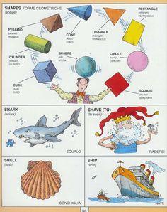 Learning Italian Language ~ Parole Inglesi Per Piccoli e Grandi - #Illustrated #dictionary - S4