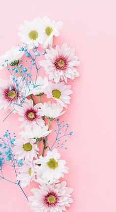 Antique Desk Miss Mustard Seeds Iphone 7 Wallpaper Rose Gold, Flower Phone Wallpaper, Iphone 7 Wallpapers, Pastel Wallpaper, Pretty Wallpapers, Tumblr Wallpaper, Cellphone Wallpaper, New Wallpaper, Screen Wallpaper