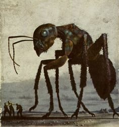 Illustration of giant mutant ant (a sci-fi cover, perhaps? Sci Fi Horror, Horror Art, Ant Art, Dragons, Sci Fi Kunst, Science Fiction Kunst, 70s Sci Fi Art, Classic Sci Fi, Insect Art