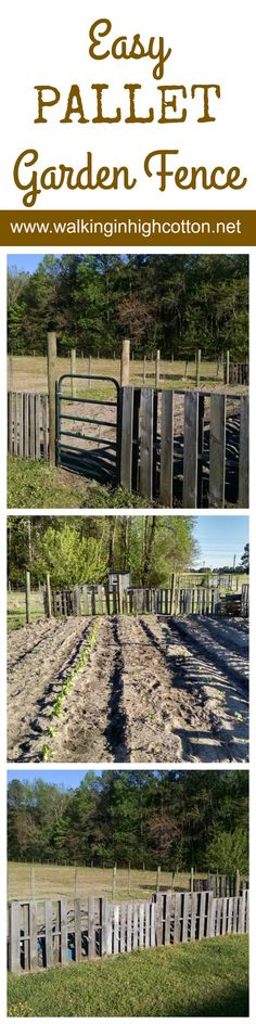 Building an easy, one-day garden fence out of pallets and wire.walkingi… Building an easy, one-day garden fence out of pallets and wire. Gardening For Beginners, Gardening Tips, Building A Fence, Pallet Building, Easy Fence, Pallet Fence, Pallets Garden, All Nature, Garden Fencing