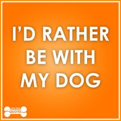 I'd rather be with my dog.