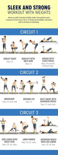 Whether it's six-pack abs, gain muscle or weight loss, these workout plan is great for beginners men and women. No gym or equipment needed! #weightloss #loseweight #absworkout #workout plan #weightlossworkout #workout #quickworkouts #burnfat https://www.youtube.com/watch?v=Q96gA6-kRZk