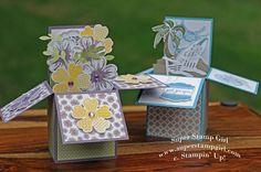 http://www.superstampgirl.com/blog/card-in-a-box