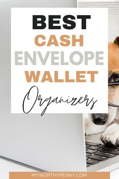 Looking for the best cash envelope organizers? Here is a list of the best cash envelope system wallet organizers that you can use for your cash envelope system budgeting. Stay motivated with your cash envelope budget by using these pretty cash envelope wallet organizers. #cashenvelopemethod Budgeting System, Budgeting Finances, Budgeting Tips, Envelope Budget, Budget Sheets, Budget App, Cash Envelope System, Cash Envelopes, Budgeting Worksheets