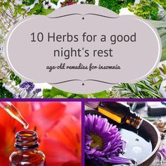 Need help catching some z's? These 10 natural herbs are age-old remedies for insomnia.
