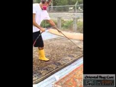 Want to Know about First Step of Rug Cleaning in Pembroke Pines  OrientalRugCare.Com - Want to Know about First Step of Rug Cleaning in Pembroke Pines rug dusting process in Pembroke Pines rug dusting in Pembroke Pines Dusting Process of Rug Cleaning in Pembroke Pines Rug Cleaning Dusting in Pembroke Pines Dusting Oriental Rugs in Pembroke Pines  Broward County: 954 - 978 - 5737