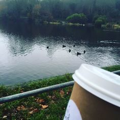 With coffee in your hand you can rule the world. #silverberrydeli #silverberry #hampstead #hampsteadheath #coffee #coffeelover