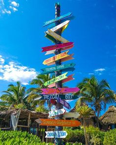where do you want to be today? Tulum Beach, Summer Travel, Mexico, Fair Grounds, World, Instagram Posts, Hostel, Pictures, Life