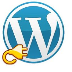Most Important Things To Keep In Mind When Using WordPress Plugins -