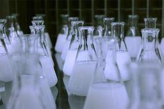 Chemie, Labor, Reagenzglas, Forschung, Wissenschaft, sience, chemical, laboratory