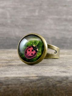 Ladybug Ring, Forest Jewelry, Garden Jewelry, Glass dome ring, Ladybird Ring, Bronze Adjustable Ring, Lady Bug Jewelry, Nature Ring
