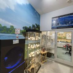 Other Smithsonian national museum virtual tours