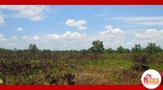 0851 5148 0808 I PIN BB 523C5AFE (BEJO) www.kavlingtanahkredit.com I www.hazeliakavling.com #JUALKAVLINGTANAHKREDIT #JUALKAVLINGTANAHMURAH #JUALKAVLINGTANAHPONTIANAK #JUALTANAHKAVLING #JUALTANAHKAVLINGKREDIT #JUALTANAHKAVLINGMURAH#JUALTANAHKAVLINGPONTIANAK#JUALTANAHMURAH#JUALTANAHMURAHPONTIANAK#JUALTANAHPONTIANAK#JUALTANAHPONTIANAKKREDIT #JUALTANAHPONTIANAK