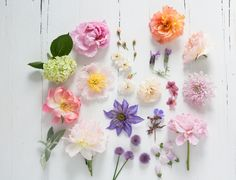 Decorating with Flowers -- by Holly Becker & Leslie Shewring