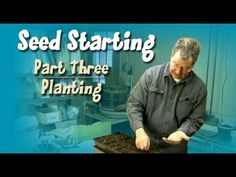 Seed Starting: Part 3 - Planting