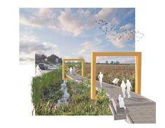 PWL Partnership Landscape Architects creates a dynamic and multifunctional landscape #landscape #boardwalk