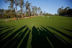 Scenes from the 2014 Masters Golf Tournament - Photos - The Big Picture - Boston.com