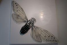 Gabriele Mallegni  Cicala su pannello  base: 120cm x 120cm  Pannello in legno laccato bianco, con circonferenza centrale lucidata a pietra d'agata, ferro e resina trasparente per le ali  Otto luogo dell'arte Firenze