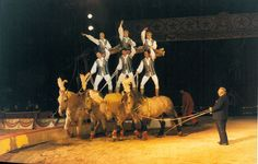 Immagine di http://www.circo.it/wp-content/uploads/2011/09/cesare-togni-in-pista.jpg.